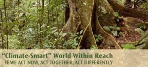 The World Bank's World Development Report